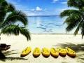 18-beach-resort-south-pacific
